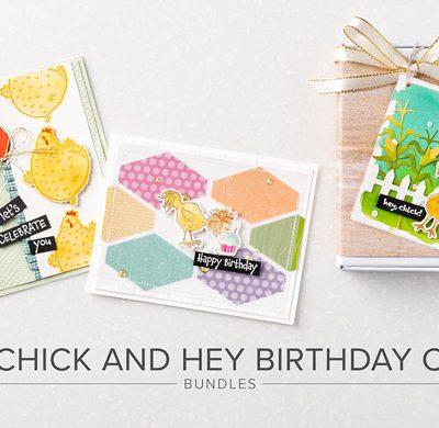 Hey Birthday Chick and Hey Chick Stamp Sets